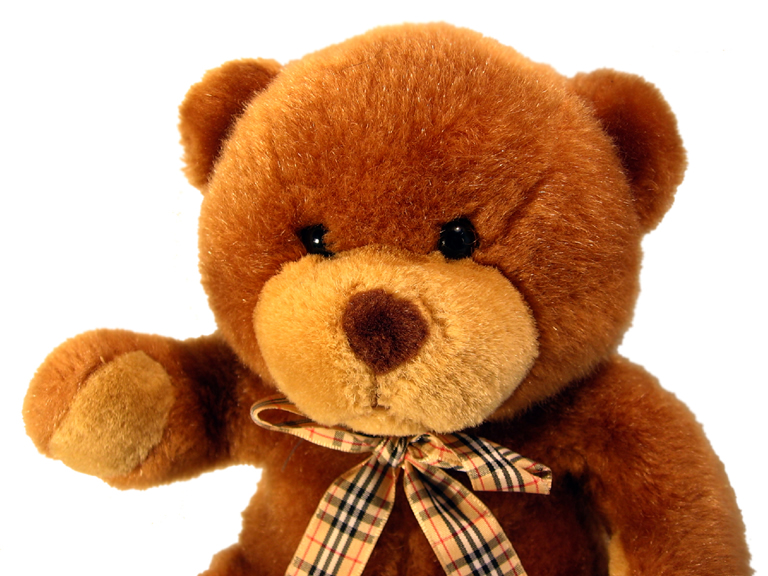 Rezultat iskanja slik za medvedek slike