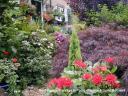 Najlepši vrtovi - vrt 2