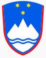 Slovenski forumi